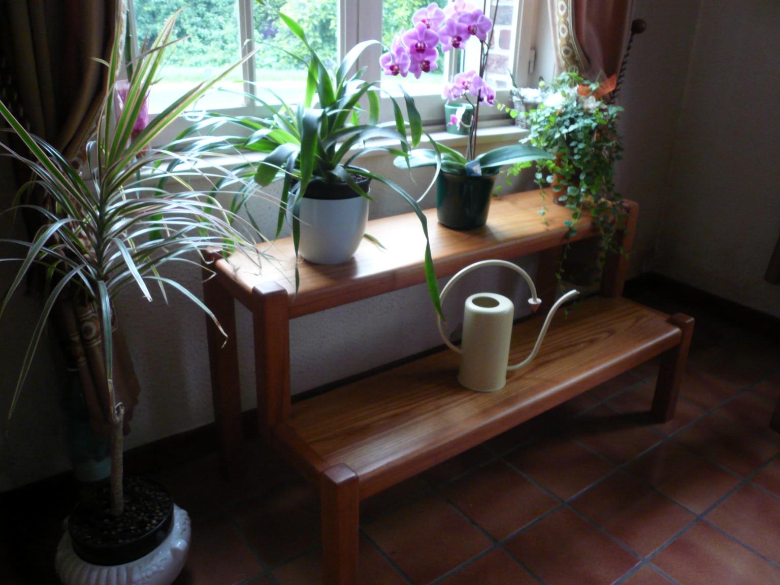 présentoir à plantes